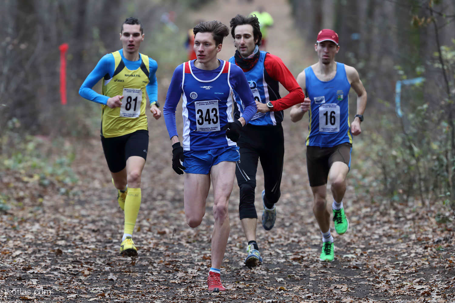 cross-country-ms-championship-hodonin-31
